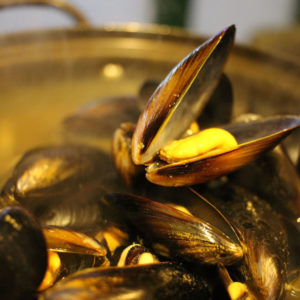 humboldt_mussels