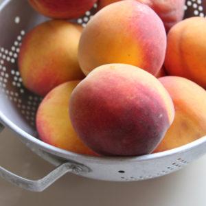 humboldt_peach