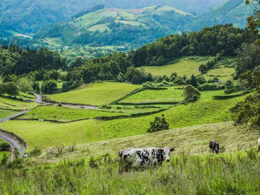 humboldt-sustainable-organic-farming