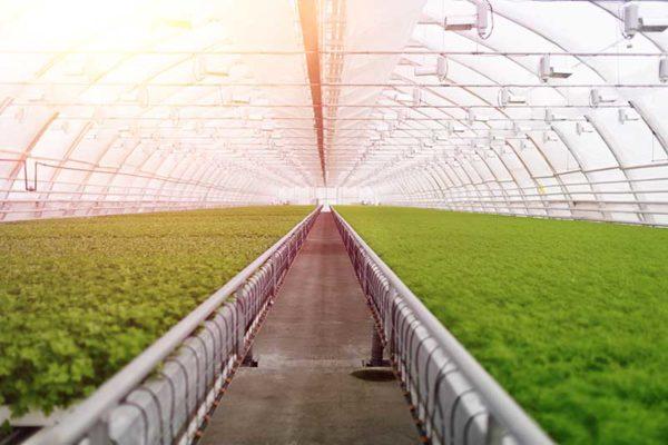 humboldt-sustainable-agriculture-farming.jpg