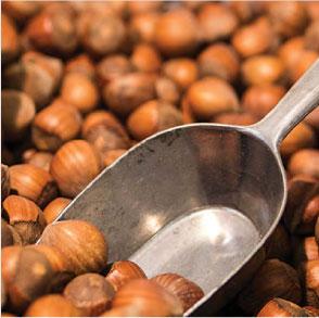 NUTS & CONDIMENTS