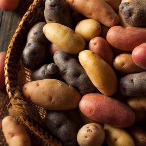 Humboldt-potato-import