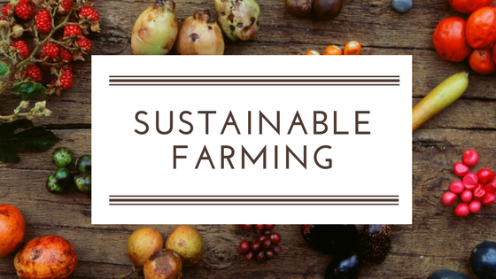 sustainable-farming